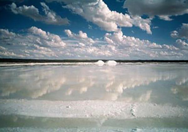 Sól zpustyni Kalahari